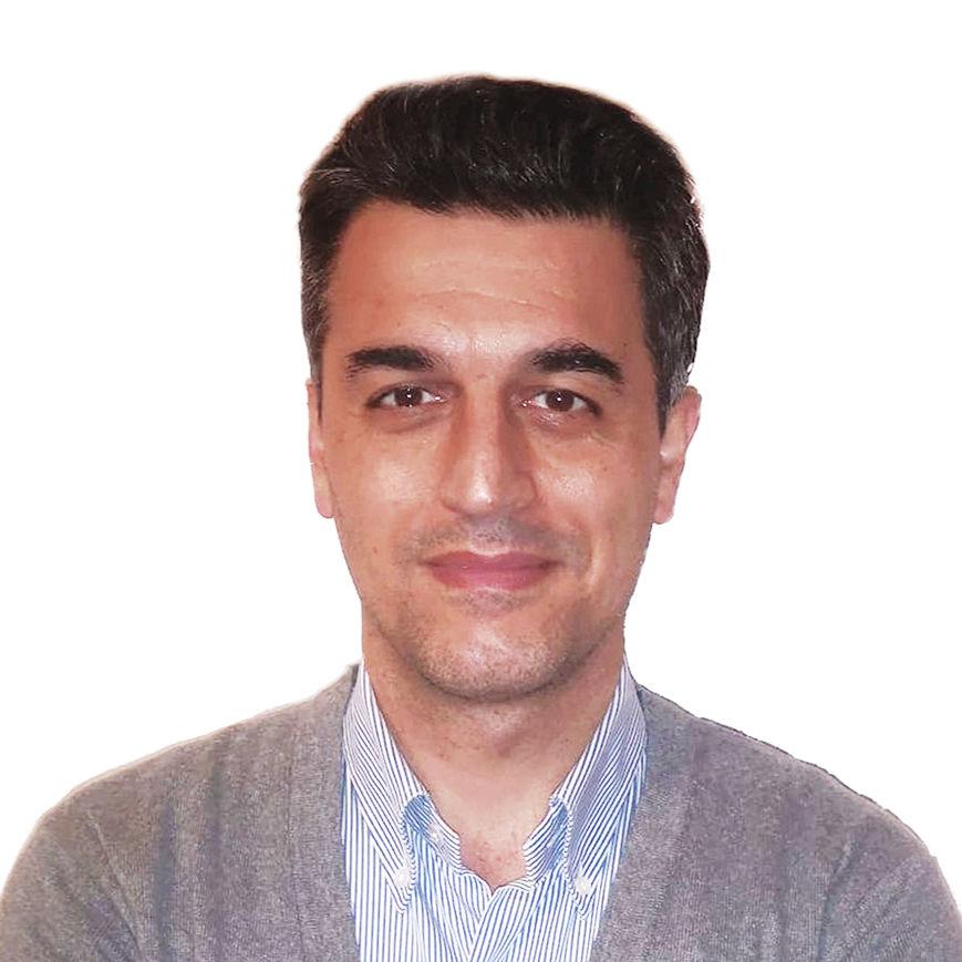 Dott. Geol. Fausto Capacci